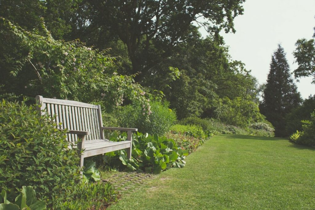 What Garden Maintenance Can You Complete In May