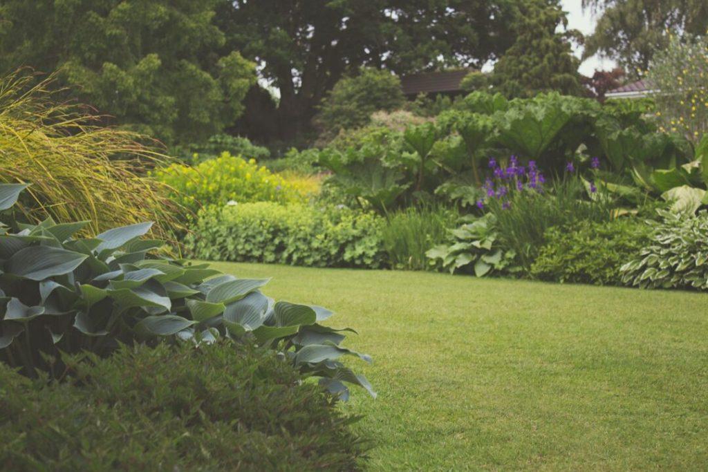 4 Garden Maintenance Tasks For June